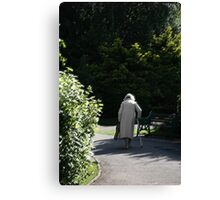 Reality Walks In A Dream Canvas Print