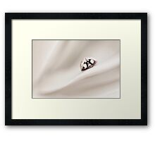 Touch of ... Framed Print