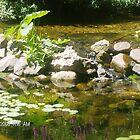 Tahlequah Peace by BabyBundtCake