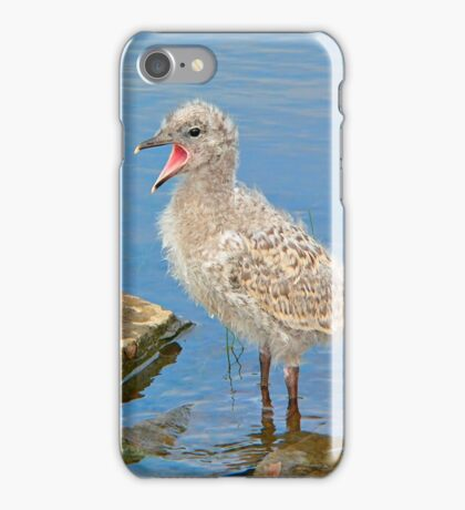 Chick Looking for Mum (Baby Seagull) iPhone Case/Skin