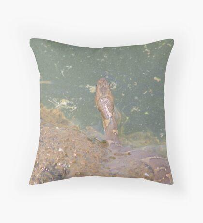 Copperhead Throw Pillow