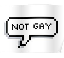 Not Gay Poster