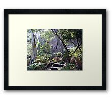 Secret Walk Framed Print