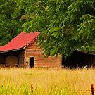 Hay Bale Barn by Susan Blevins