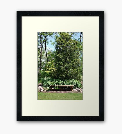 Empty Park Bench Framed Print