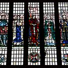 QUB NI - stained glass window by SNAPPYDAVE