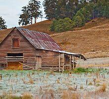 Barn at Cygnet, Tasmania by Chris Cobern