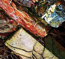 Bricks & Vine by rlbellamy