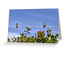 Two Hummies on a Wire Greeting Card