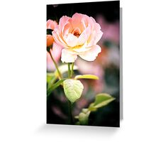Melodious Greeting Card