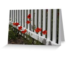 Picket Fence and Poppies Greeting Card