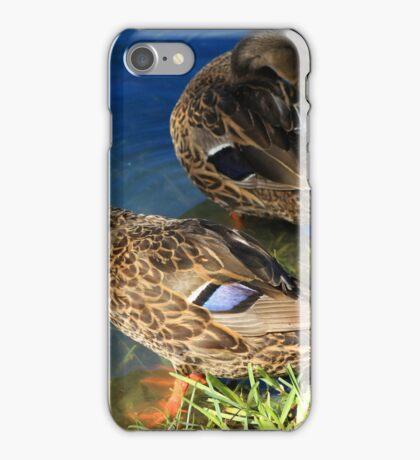 Ducks Preening Feathers iPhone Case/Skin