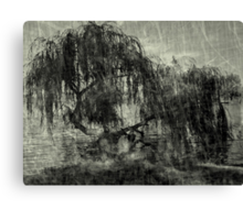 Willow Rest Canvas Print