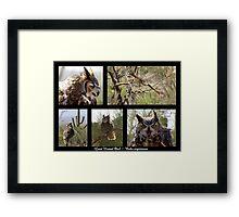 Great Horned Owl ~ Raptor Series Framed Print