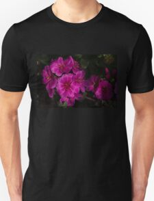 Silky Pink Cactus Blooms Unisex T-Shirt