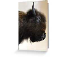 Prairie Bison Greeting Card