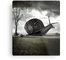 Snail Trail Metal Print