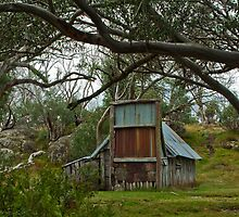Mountain Hut - NE Victoria by David Woolcock