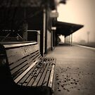 Lonely Station by Gerijuliaj