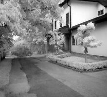 Gardener's house by Ethem Kelleci