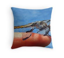 Where are the Mosquitoes? Throw Pillow