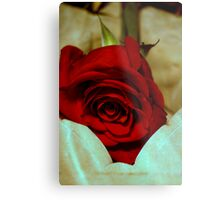 red rose in violin case © 2010 patricia vannucci  Metal Print