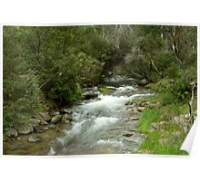 Leather Barrel Creek - Snowy Mountains Poster