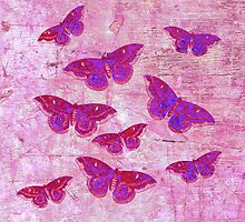 Butterflies Colour OF by Vitta