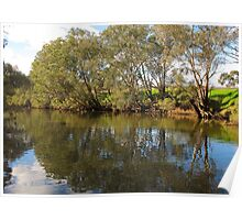 Swan Valley Reflections Poster