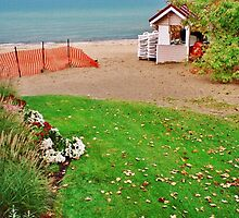 A Little Late In The Season ~ Lake Michigan, USA by artwhiz47