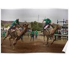 Alice Springs Camel Cup 2010 Poster