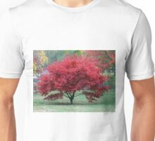 Red Dwarf Maple Tree Unisex T-Shirt