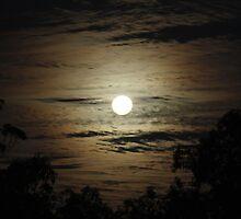 Full Moon Over Echelon by Jenelle  Irvine