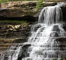 Top of the Falls - Brandywine Falls, Ohio by Wendy King