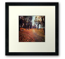 Walkaway Framed Print