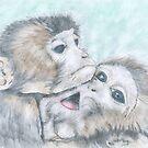 Wildlife Drawings by Peter Allton