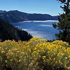 Fall glory at Crater Lake by Nancy Richard
