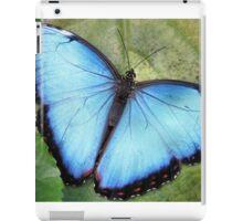 Blue Blue Morpho So Blue iPad Case/Skin