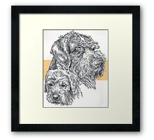 German Wire-haired Pointer, Father and Son Framed Print