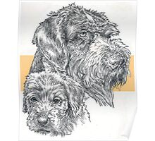 German Wire-haired Pointer, Father and Son Poster