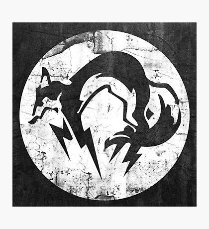 Foxhound V1 (White) Photographic Print