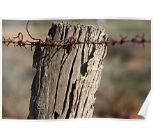 Fence Post , Willochra, South Australia Poster