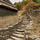 Old Stairs by Maryna Gumenyuk