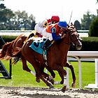 close finish - horse racing in kentucky by John Carey
