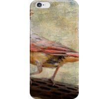Female Cardinal iPhone Case/Skin
