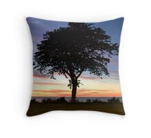 Tranquil - Lake Erie Throw Pillow