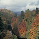 Killiekrankie in autumn, Perthshire by derekwallace