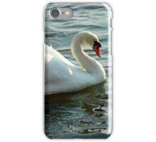 Graceful Blue Eyed Swan iPhone Case/Skin