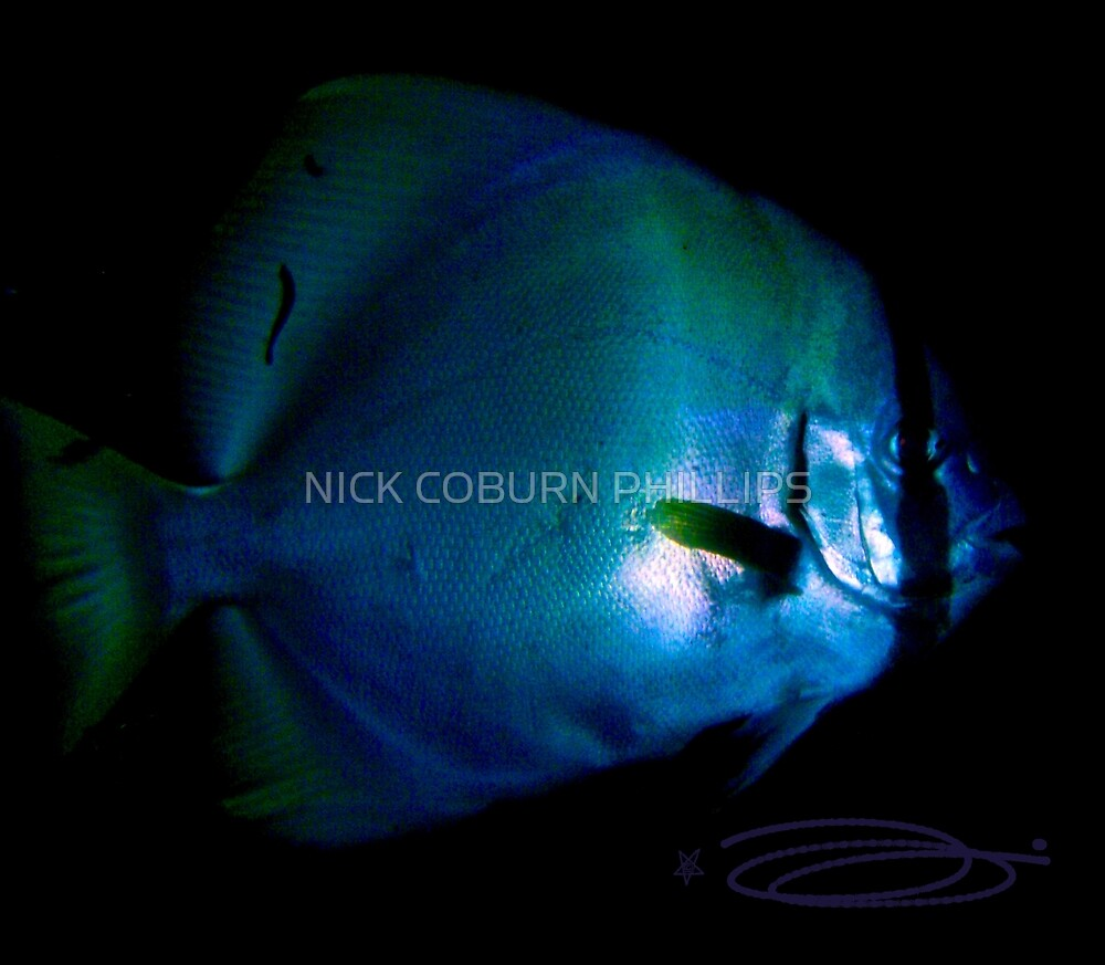The Blue Orb! by NICK COBURN PHILLIPS