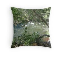 infamous kern river Throw Pillow